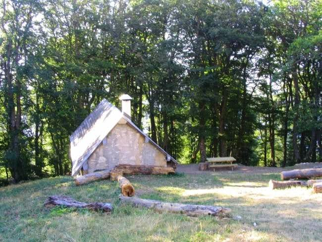 Hut in the beech forest near...