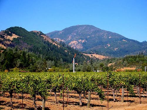 Mt Saint Helena from Calistoga