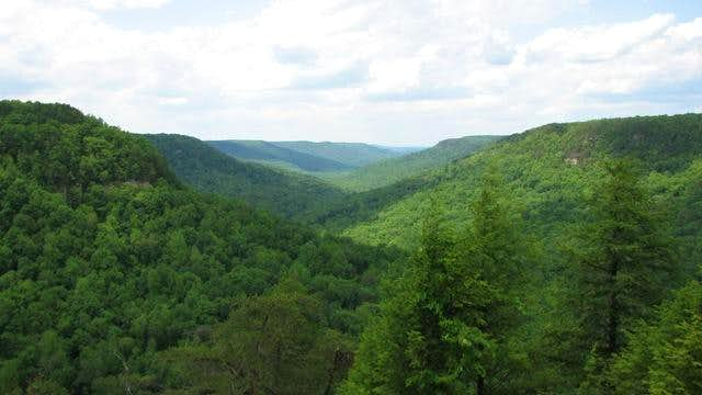 Cane Creek Canyon