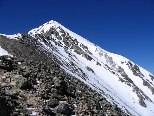 Torreys Pk from the North Ridge