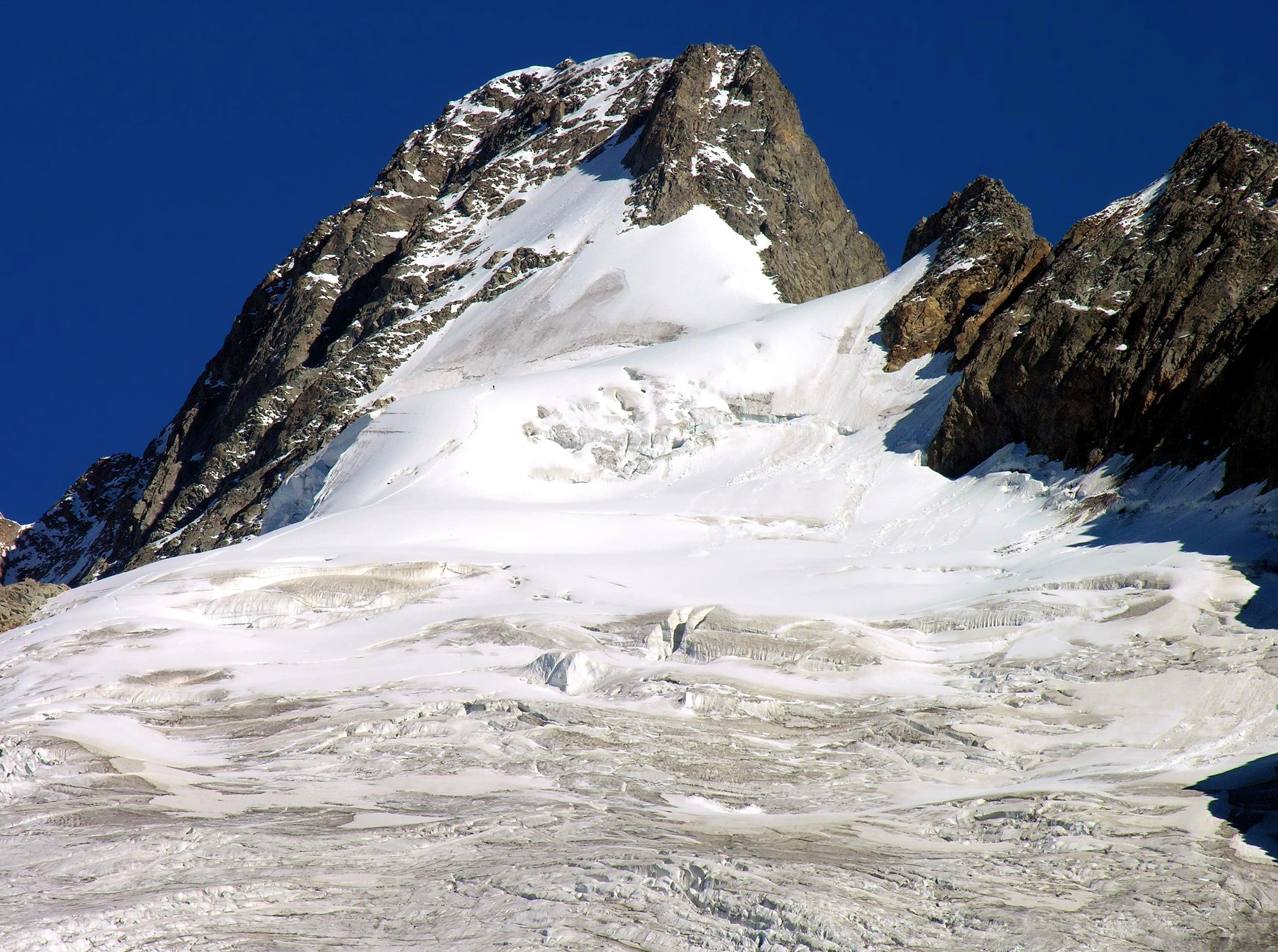 <font color=blue>▲</font>Mont Dolent from Arête du Grapillon (3823m)
