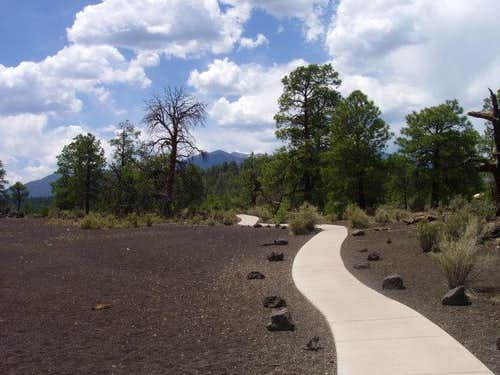 Trail at Sunset Crater NM