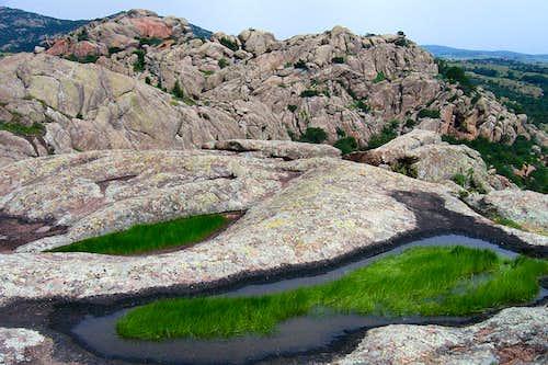 Pothole Ecosystems