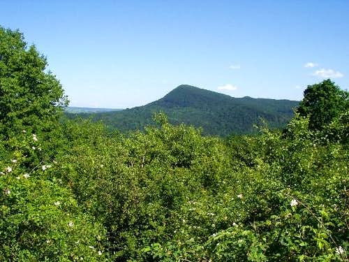 Mount Cergowa ( 716 m )