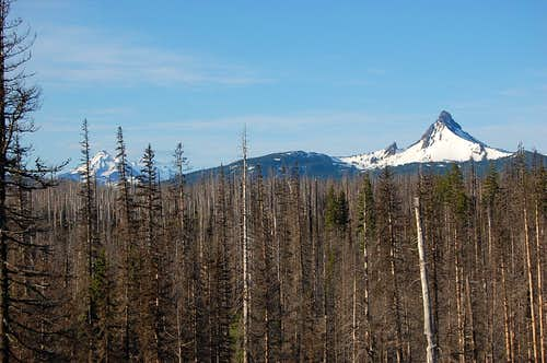 North and Middle Sister and Mt. Washington from near Santiam Pass