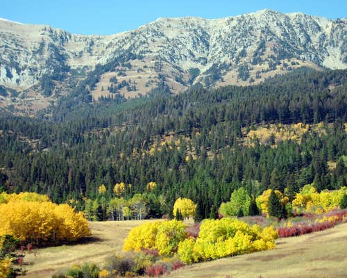 Bridger Mts