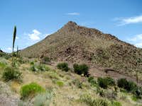 Point 5710 in the Doña Ana Mountains