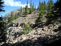 Upper NW Ridge of Notch