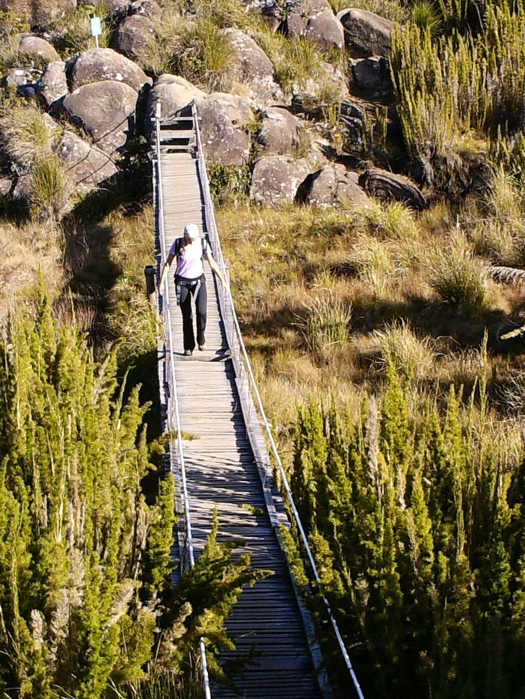 Bridge to Agulhas Negras...