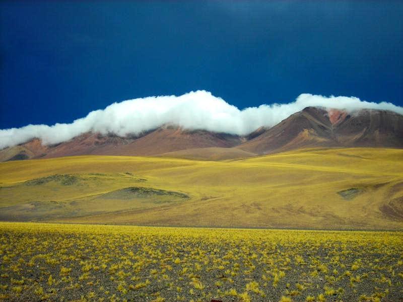 Puna de Atacama - Landscape 01