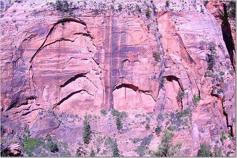 Wall of Arches, Zion National Park