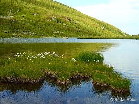 Lake Lala Mică