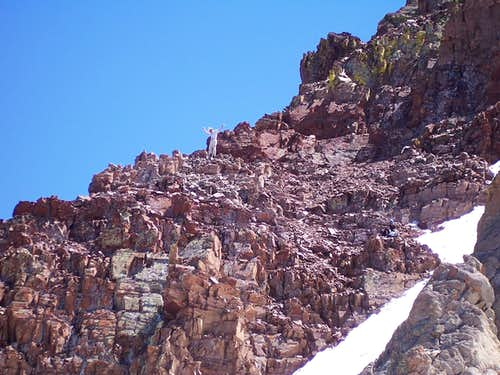 Topping out on the White Gully