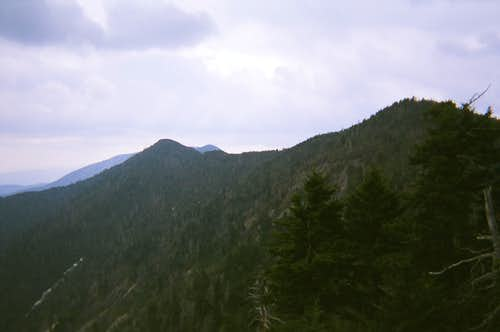 Cattail Peak and Balsam Cone