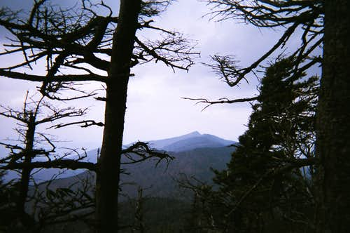 Looking North along the Black Mountain Crest