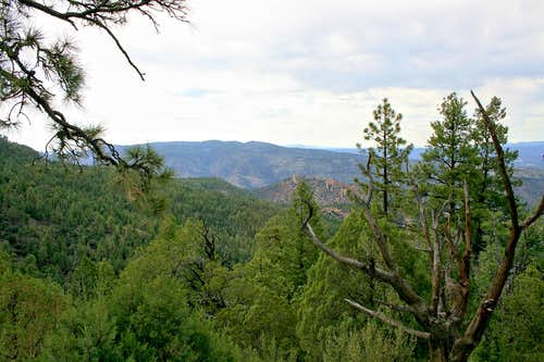 Gila Wilderness view