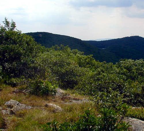 Lambs Hill