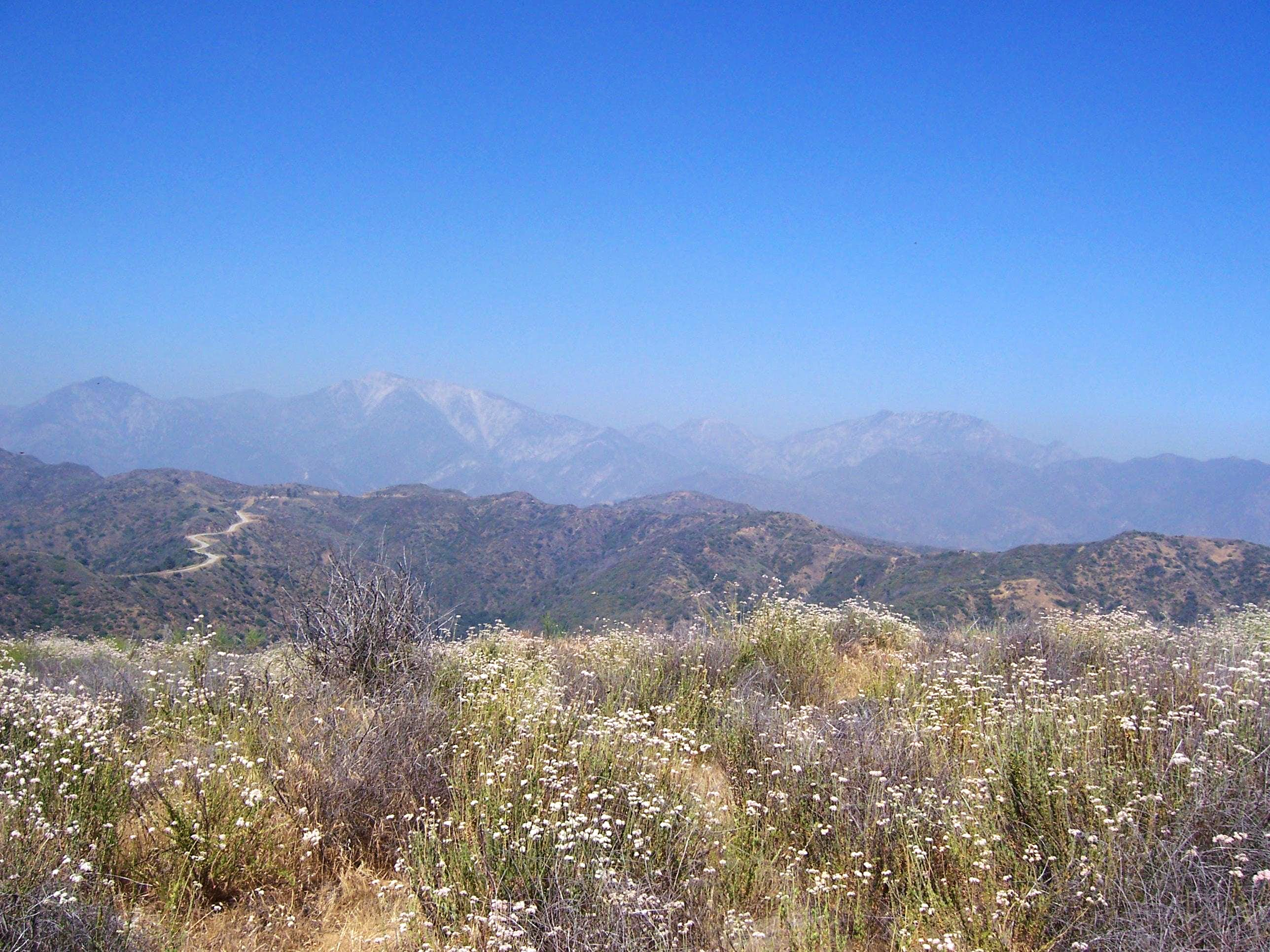 Glendora Mountain