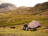 Mt Ausangate Camp