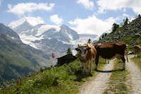 Quintessential Swiss scenery