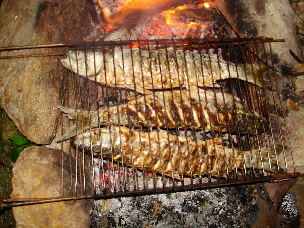 Grilled Fish??? Yes !!!