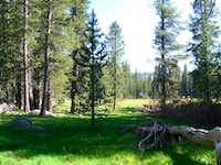 Rowell Meadow