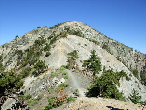 Devil's Backbone and Mt. Harwood