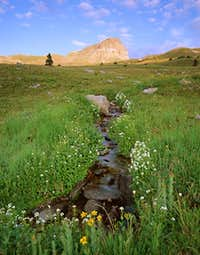 Uncompahgre Peak as seen from...