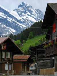 Gspaltenhorn from Murren