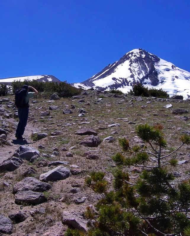 Cooper Spur Mount Hood