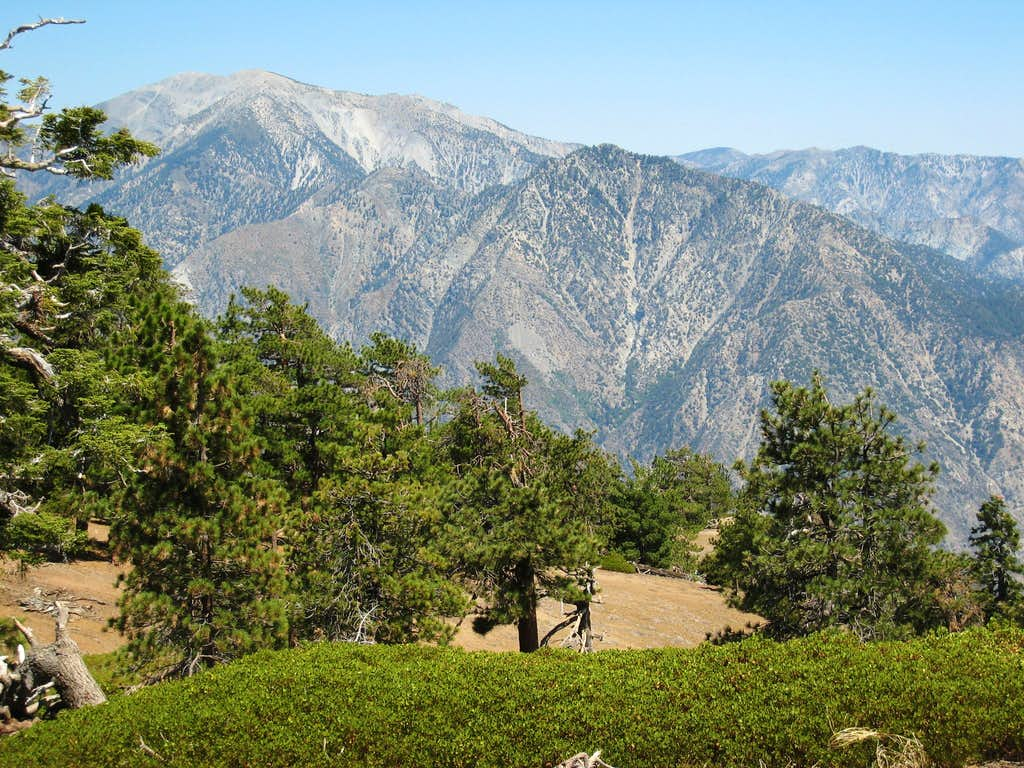 Mt. Baldy (10,064')(L) and Iron Mtn.#1 (8007')(CR)