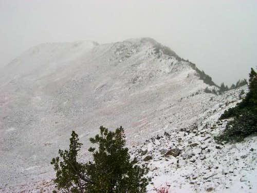 Looking back at the SE Ridge...