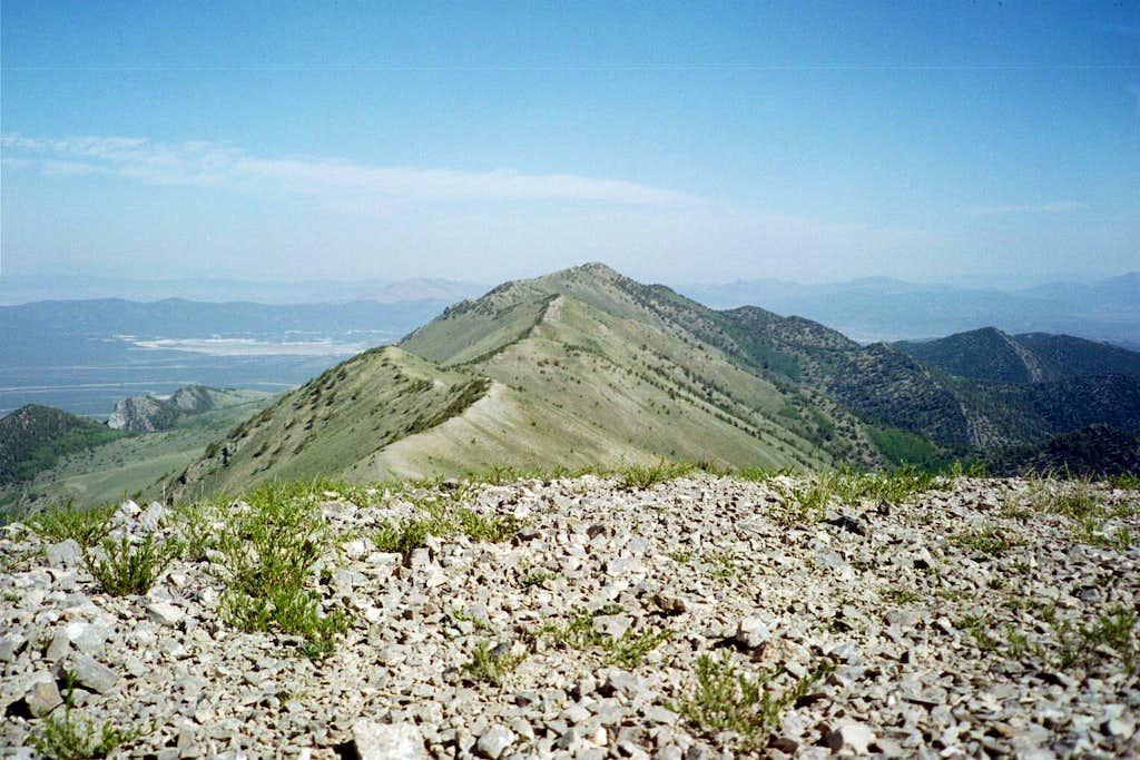 Ward Mountain