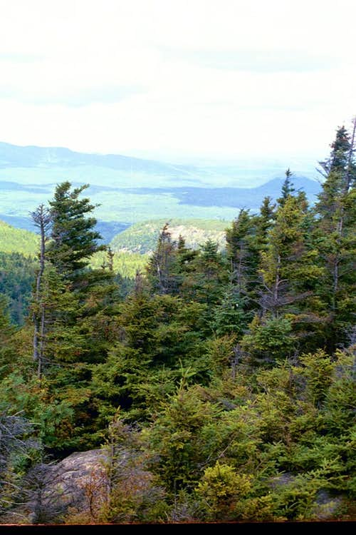 View of Huckleberry
