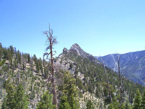 Cockscomb Peak