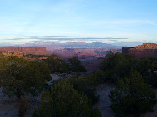 Distant La Sals from Canyonlands Nat Park