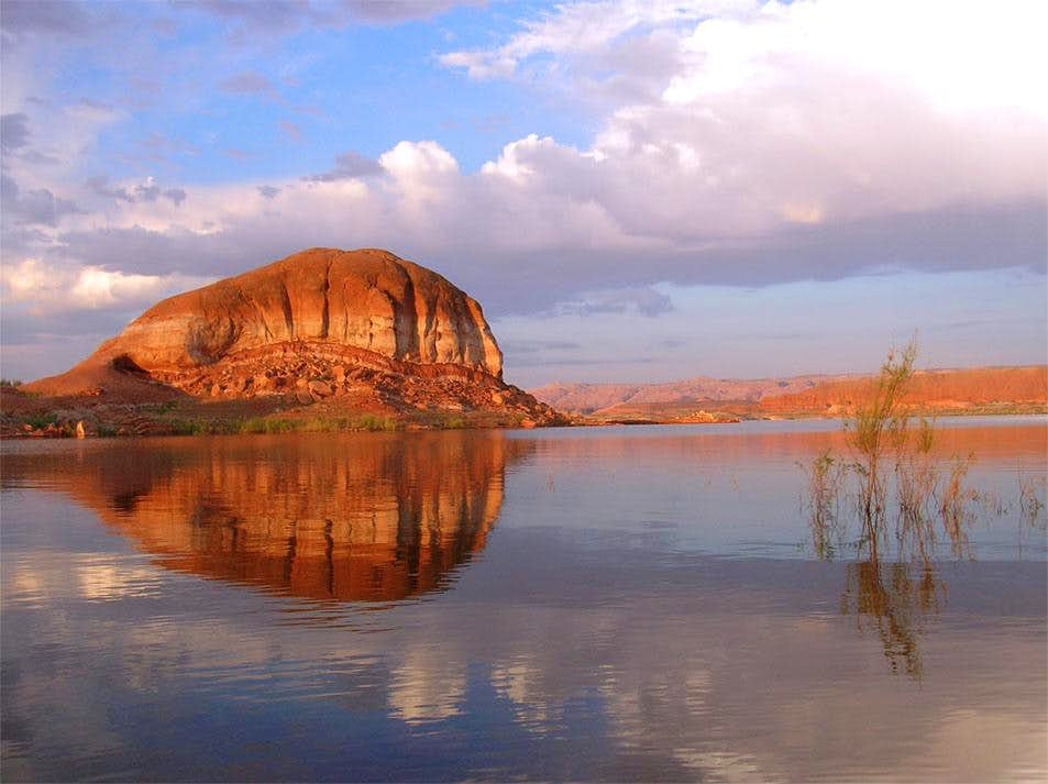 Bullfrog Rock Reflection