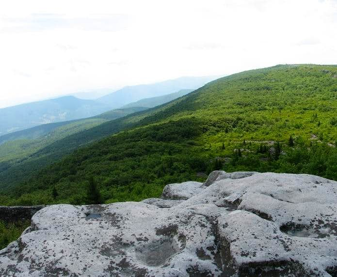 View from Bear Rocks.