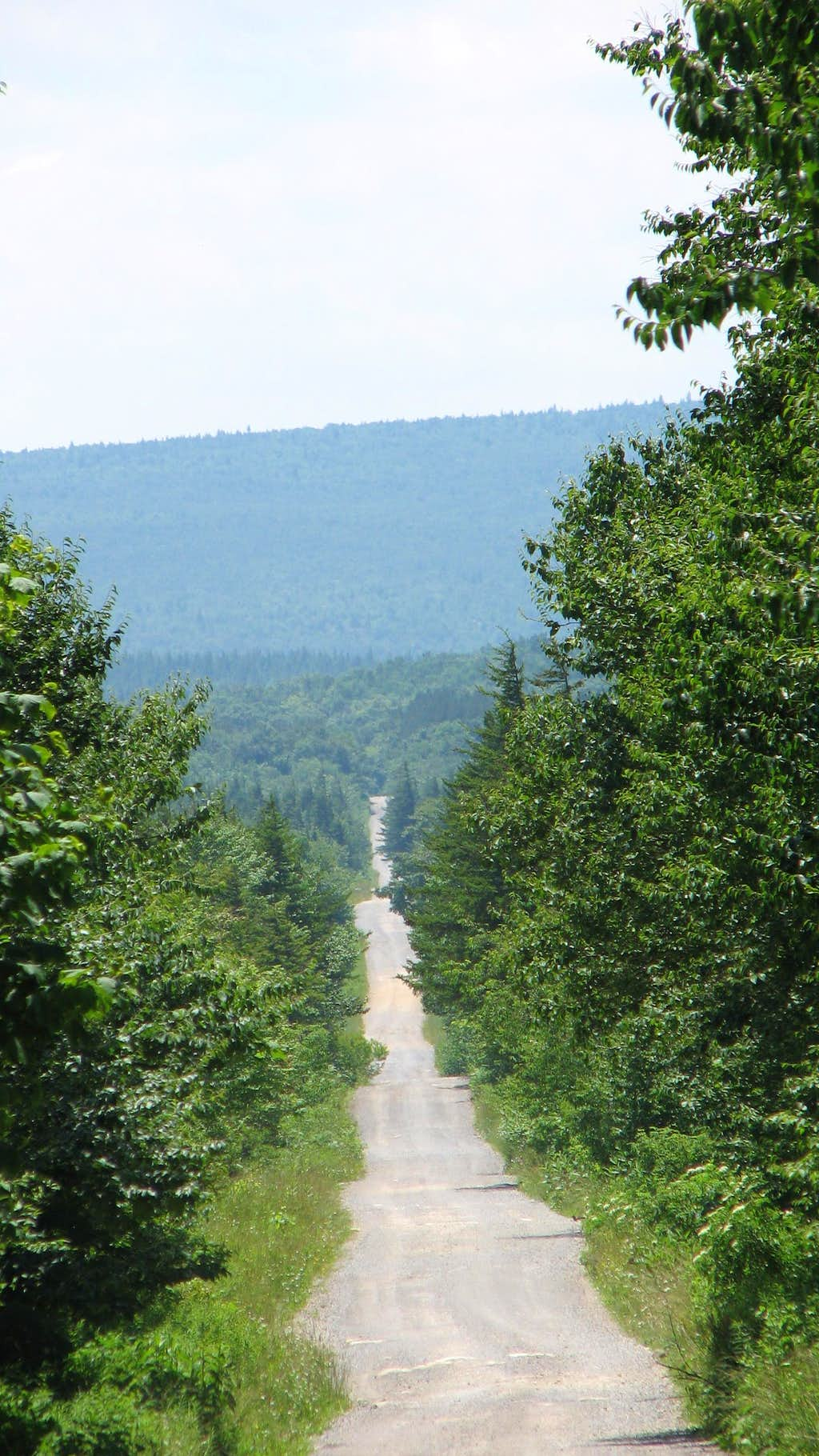 Forest Service Road 75
