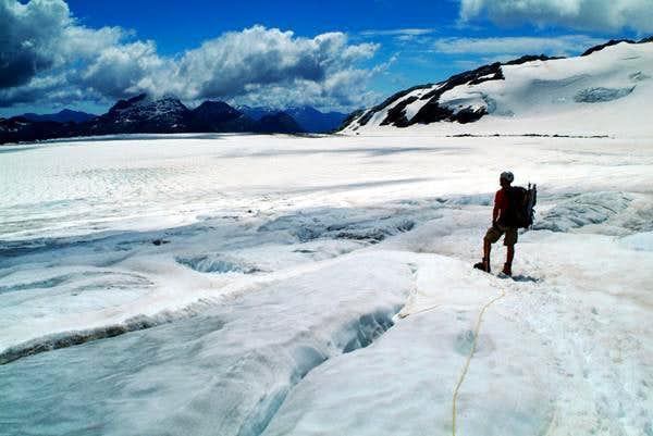 Bonar Glacier