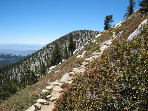 Jean Peak (10,670\') from Trail to San Jacinto Pk