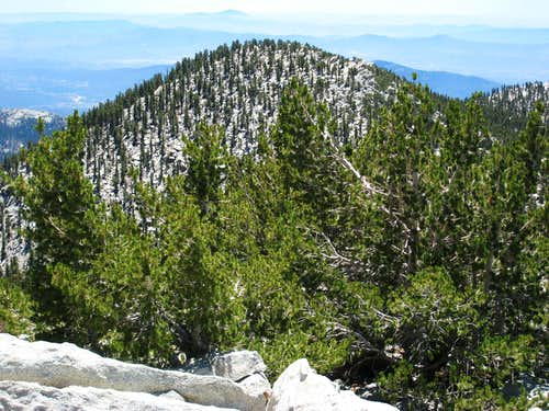Jean Peak (10,670\') from summit of San Jacinto Pk (10,834\')