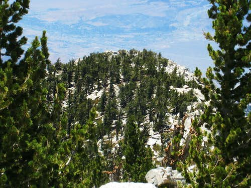 Looking toward Folly Pk (10,480\') along San Jacinto Pk\'s  NW Ridge