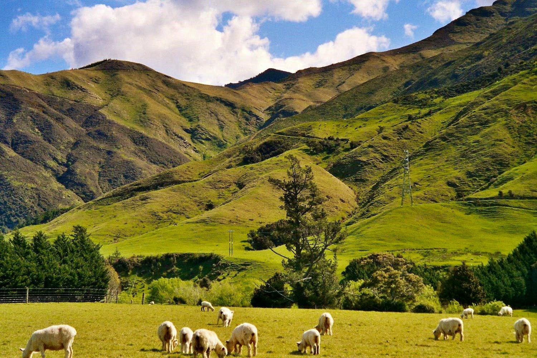 Rai Valley Photos Diagrams Topos Summitpost