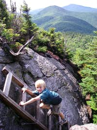 Ladder on the Long Trail