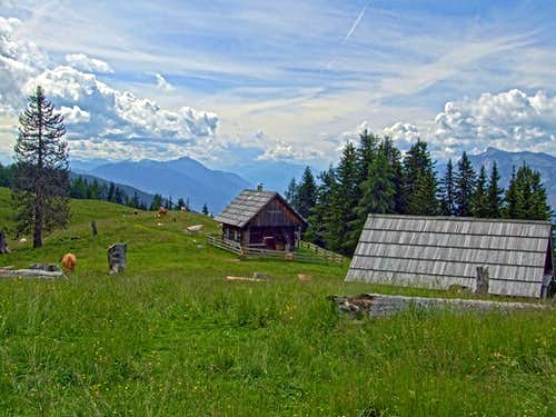 Blekova alpine meadow