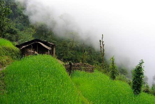 Terraced fields south of Lukla