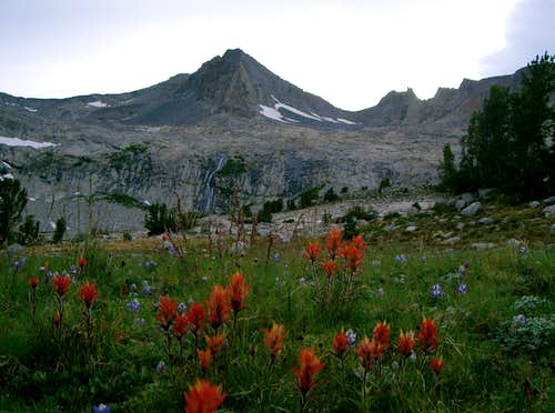 Simmons Peak form One of the Meadows Below