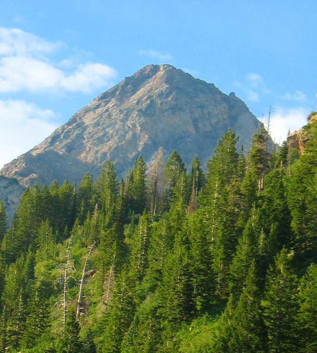 Dromedary Peak from Broads Fork Trail