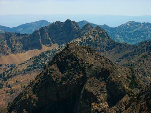 Monte Cristo & Dromedary from Twin Peaks